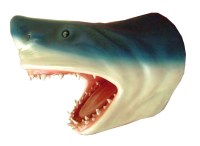 Shark Head Wall Mount 2FT