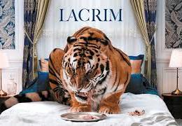 LACRIM – éprouvé (English lyrics)