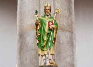 A statue of St Patrick holding a Shamrock in his right hand with some snakes at this feet - The Irish Place