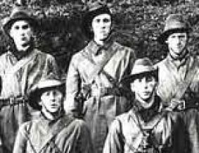 Irish Volunteers,