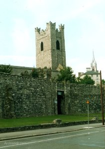 Dublin's city wall on Cooke Street.