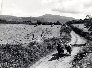 The countryside around Listowel, north Kerry.