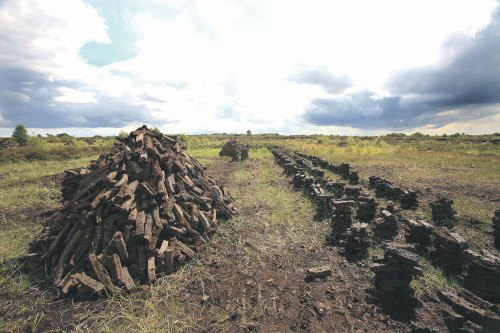 Born na Móna to stop peat harvesting