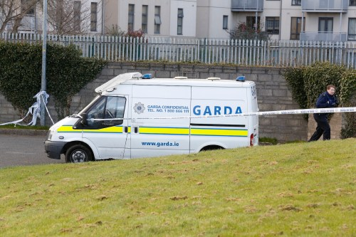 Father and son drown in stream in Dublin