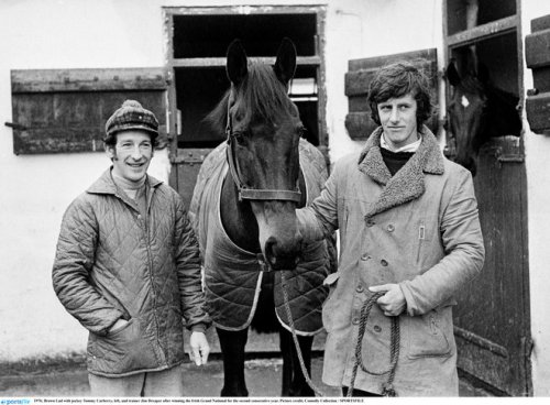 horse racing tommy carberry death jockey trainer