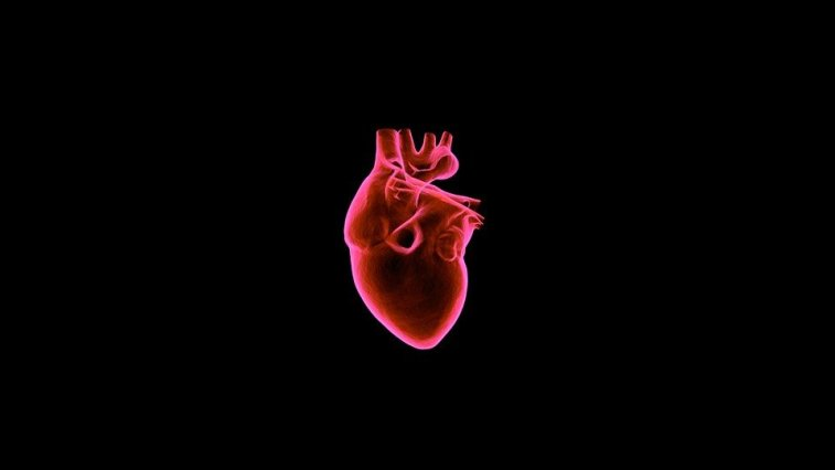 Researchers Develop New Biometric Unlocking System Using the User's Heart