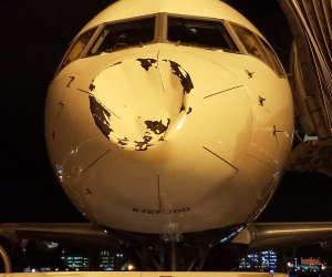 airplane freak accident