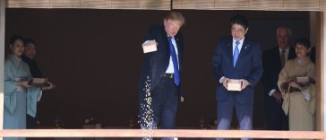 trump feeds fish
