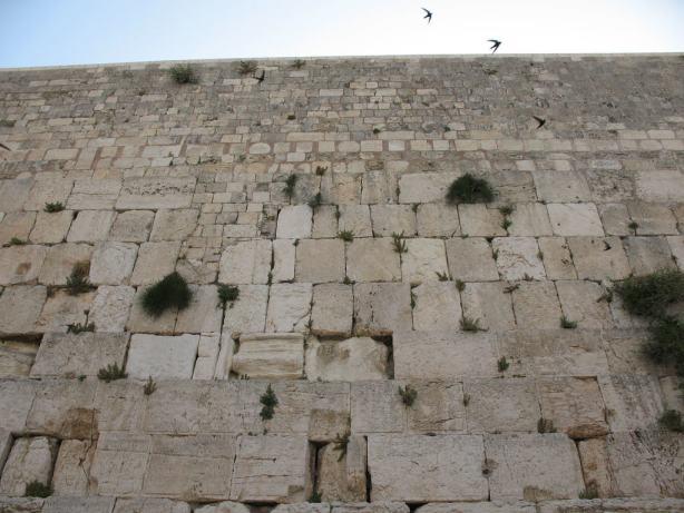 Western Wall_1839