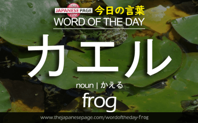 Beginner Word of the Day – カエル [frog]