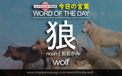 Beginner Word of the Day – 狼 [wolf]