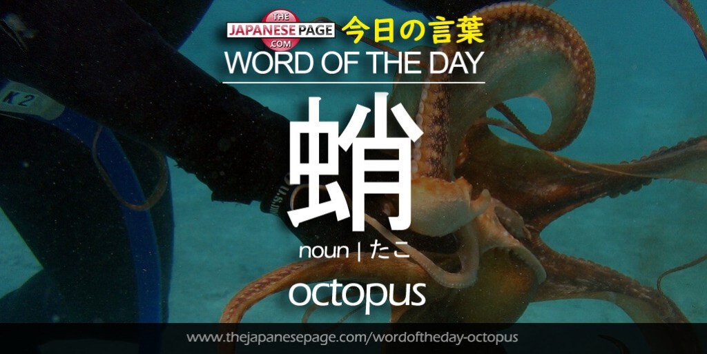 The Japanese Page Word of The Day - Octopus