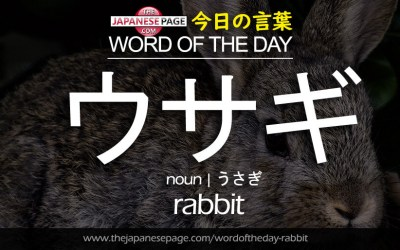 Beginner Word of the Day – ウサギ [rabbit]