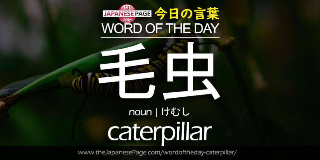 The Japanese Page Word of The Day - Caterpillar