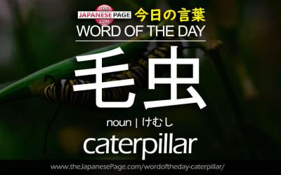 Beginner Word of the Day – 毛虫 [caterpillar]