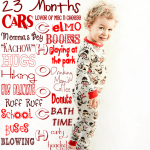 23 Month Picture Board