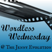 Weekly Wordless Wednesday Linky Party at the Jenny Evolution