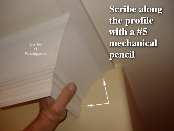crown molding buildup model