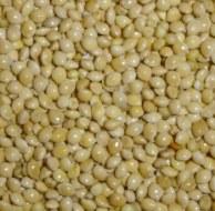 Marvelous Millet