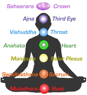 The extraordinary Pineal Gland