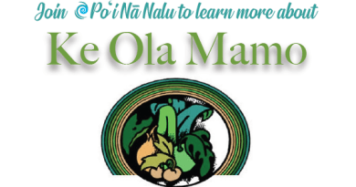 Ha'ehuola wellness event is Wednesday