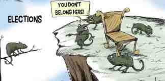 Kashmir, Kashmir elections, Lok Sabha elections, Elections in Kashmir