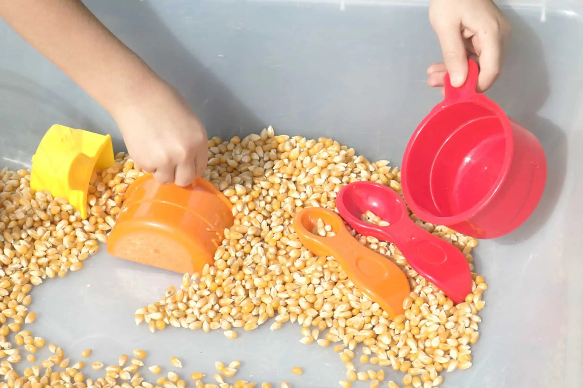 Farm Preschool Monthly Theme Sensory Bin 6
