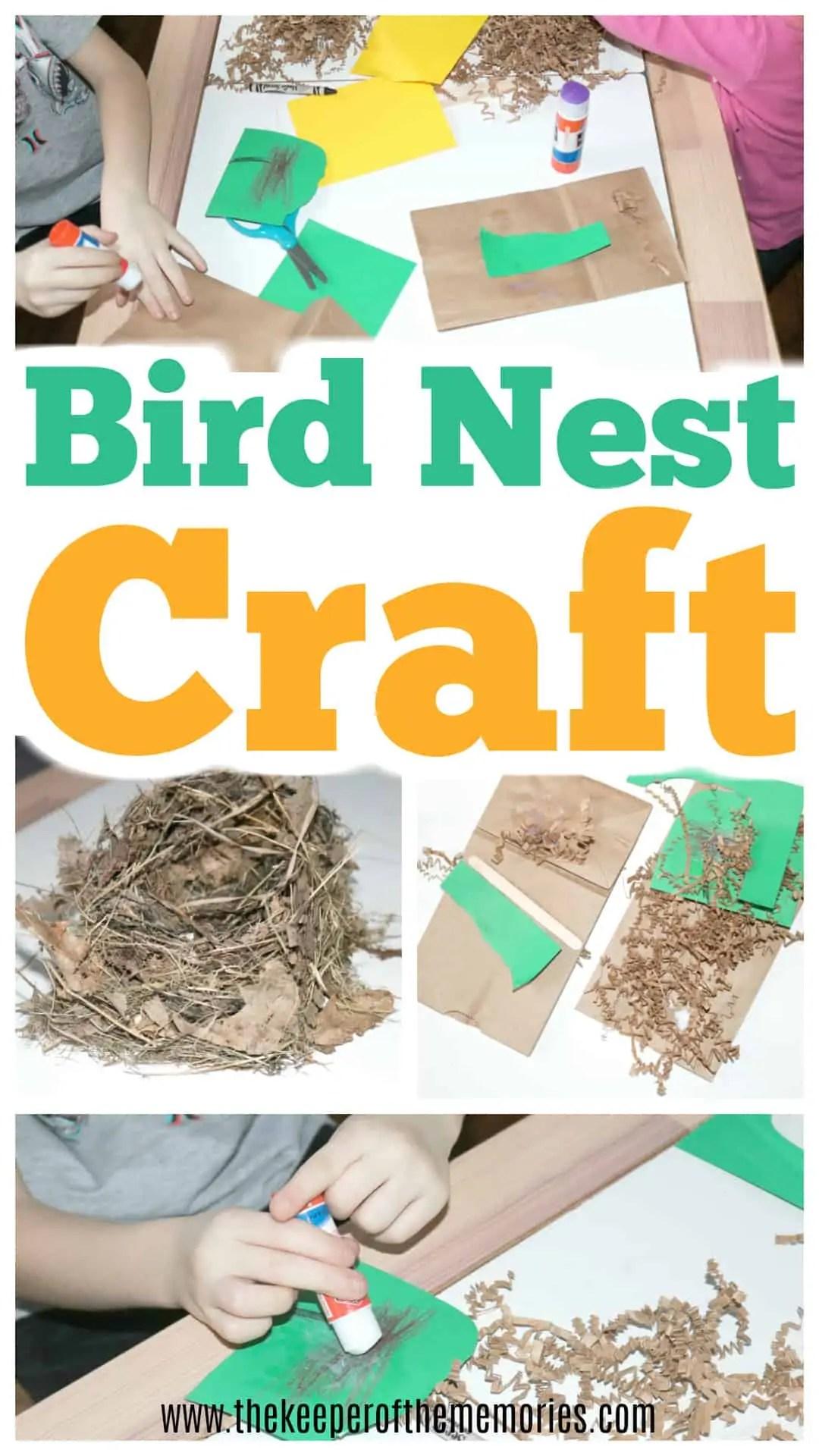 Bird Nest Craft For Preschoolers