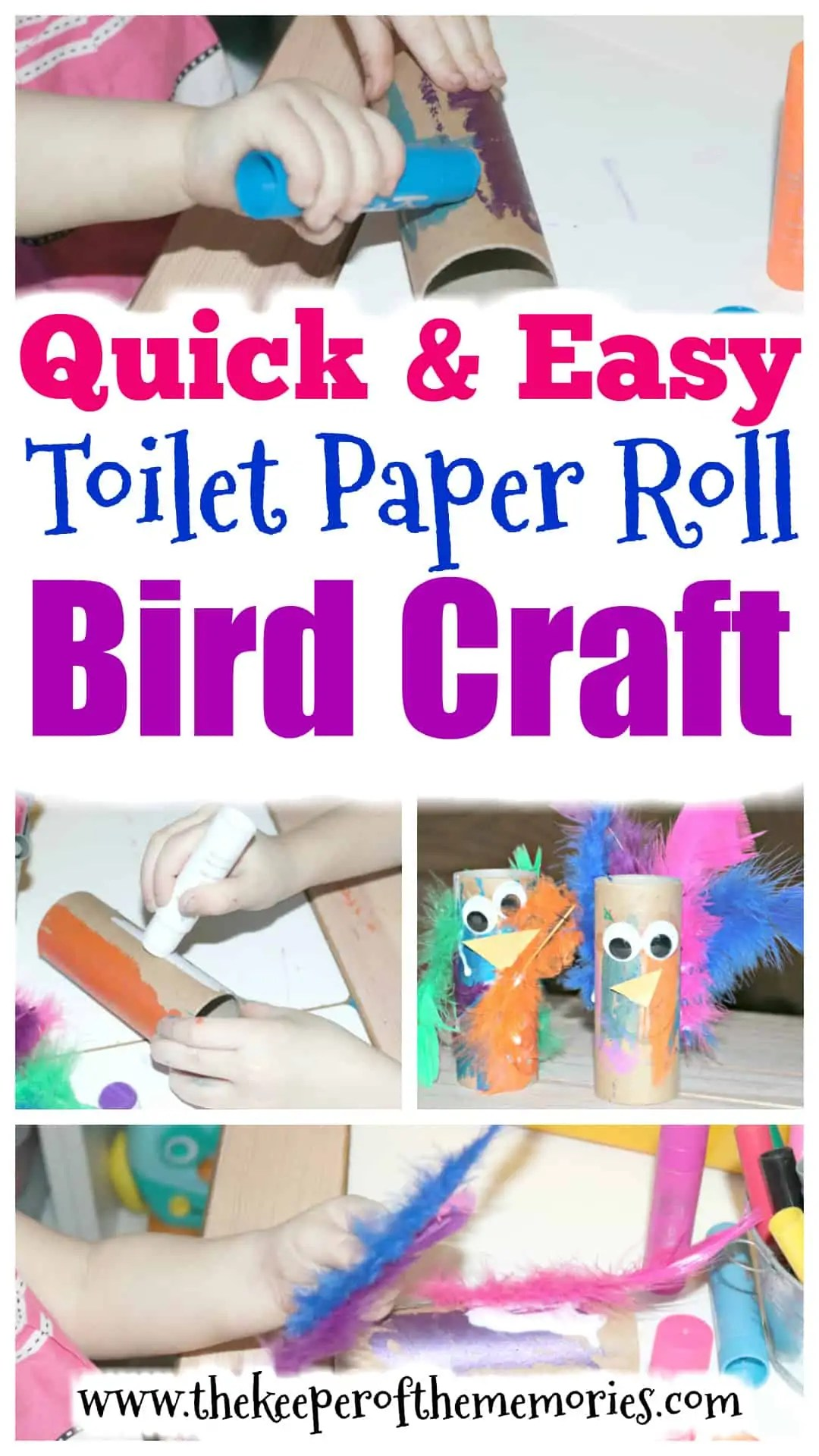 Toilet Paper Roll Bird Craft For Kids