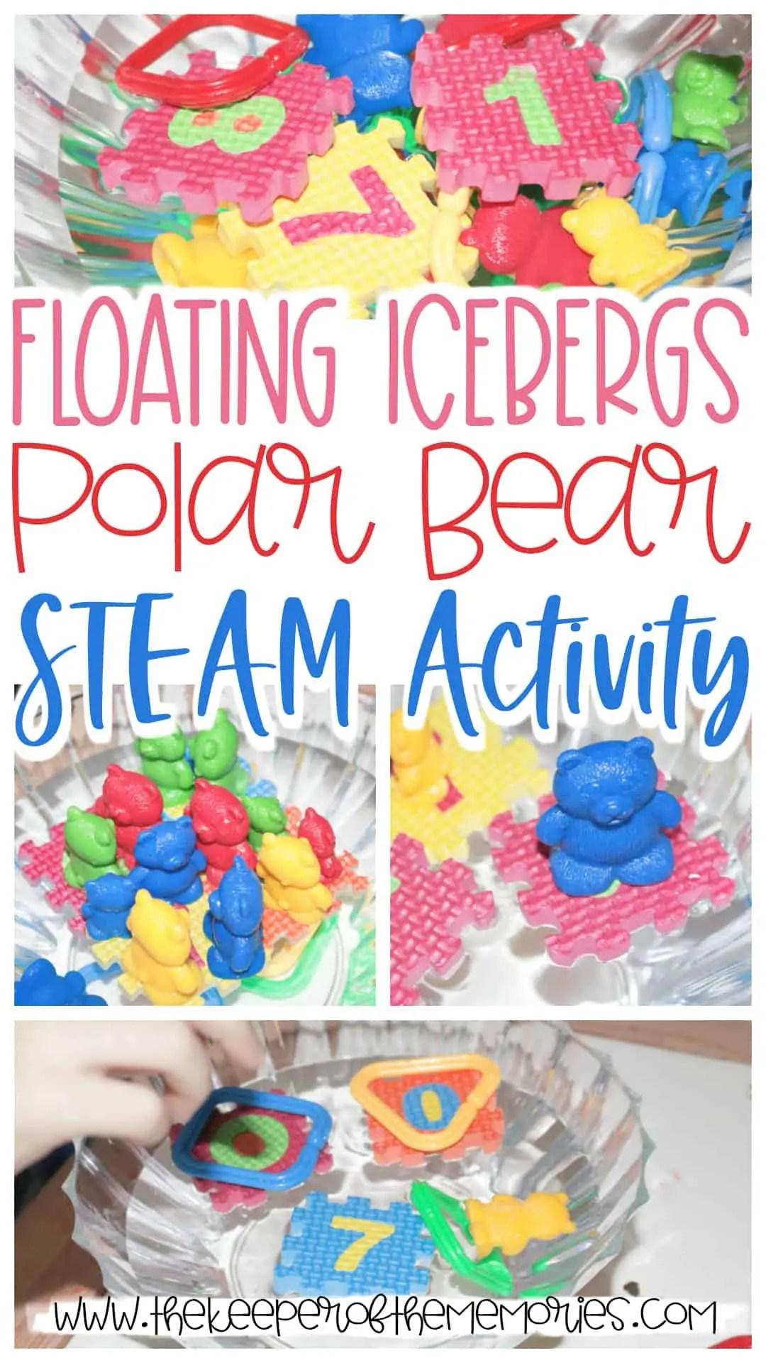 Floating Icebergs Polar Bear Steam Activity