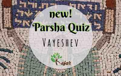 New Kefar Freebie! Vayeshev Parsha Quiz