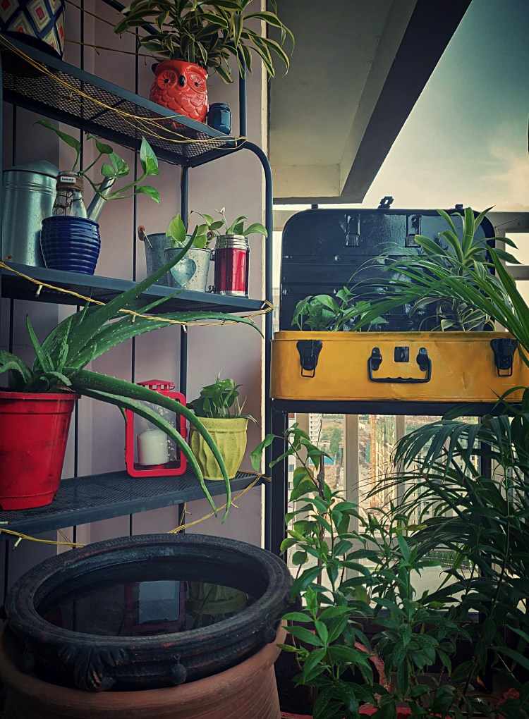 """Home style Tour with Rajni in Hyderabad: the old trunk was painted and converted into planter in my balcony"