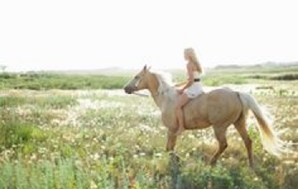 Horse Riding Never Felt This Good – Taboo Bestiality Fantasy