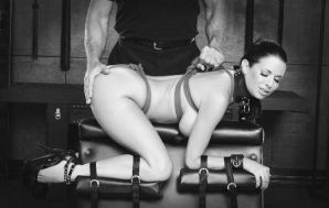 I got my ass trained in one of my bdsm…