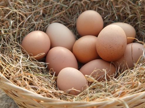 product-farm-fresh-eggs