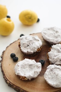 These lemon blueberry cheesecake bites are vegan, gluten free, paleo, and absolutely delicious. They're naturally sweetened, easy to make, and require no baking.