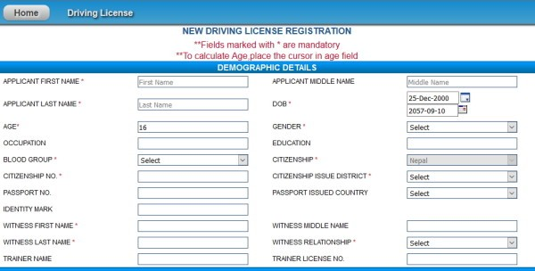 driving licence online form