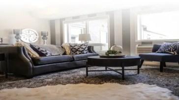 Area rug living room