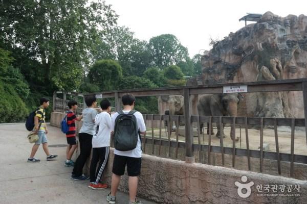 Childrens grand park Seoul top10 Parcs - blog coree du sud - the korean dream 3