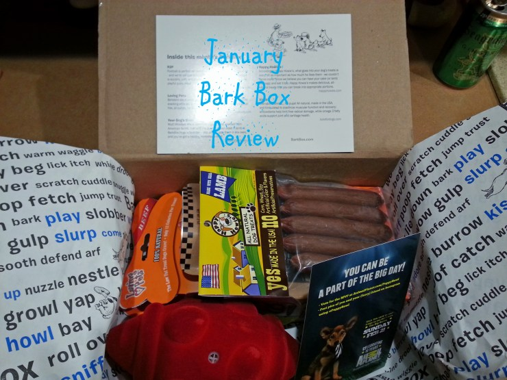 January-Bark-Box-Review-1024x768