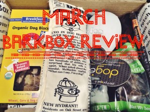 BarkBox Review March
