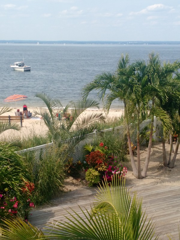 Ocean - Bayville, NY