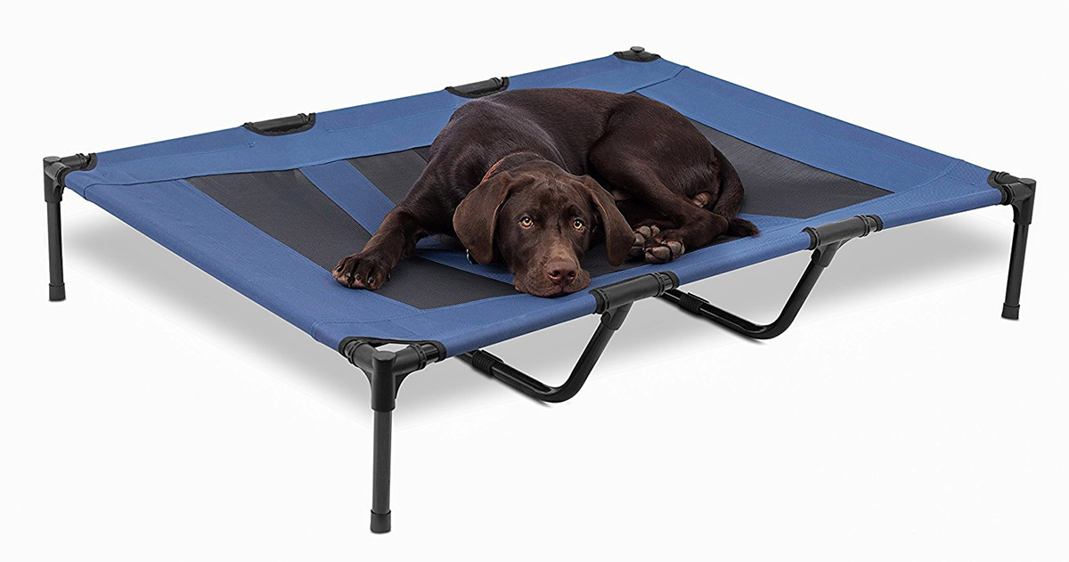 Choosing A Raised Dog Bed A Review Of The Best Elevated Dog Beds The Labrador Site