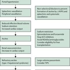 Pathophysiology Of Liver Cirrhosis In Diagram Form Husky Air Compressor Wiring The Lancet