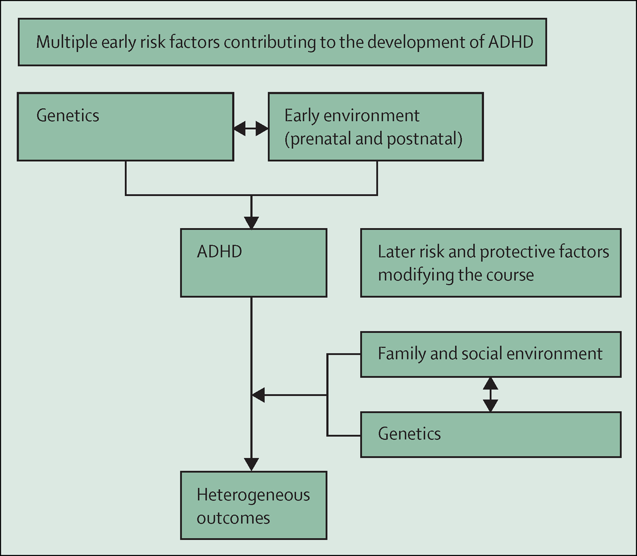 Attention Deficit Hyperactivity Disorder The Lancet
