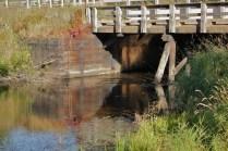 Carp River, bridge