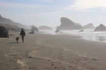 IMG_2551 western Oregon coast, the landrovers