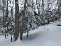 IMG_1851 snowy winter northern MI - Leelanau county