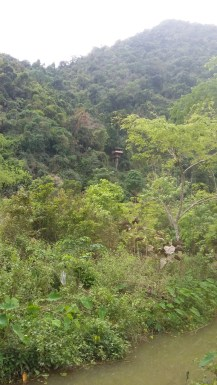 Treehouse outside of Vangvieng