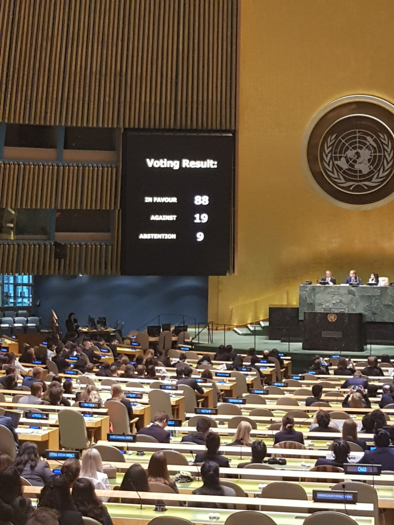 The conference during the final voting procedure at the United Nations